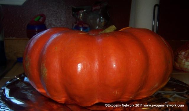 Cinderella pumpkin ready to stuff