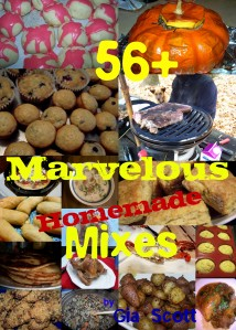 56+ Marvelous Homemade Mixes cover